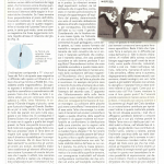 Asse Magnetico numero 1 Nonsiamosoli Luglio-Dicembre 1995 parte 2