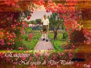 Eugenio nel suo roseto solare di Paola Ragno