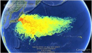 Le acque contaminate dall'incidente di Fukushima